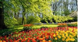 warszawa-w-kwiatach-i-zieleni